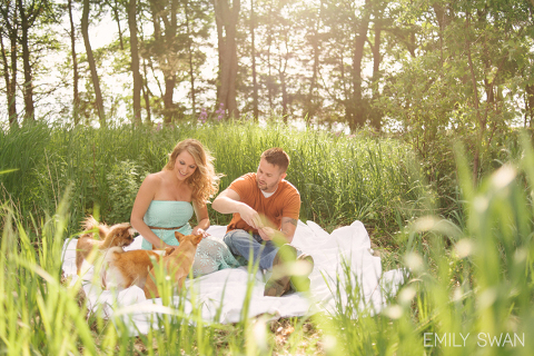 Candid couple on blanket feeding 3 dogs Sioux Falls South Dakota Midwest engagement photographer