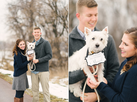 Dog with handmade engagement sign around neck